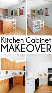 Average Cost To Replace Kitchen Cabinets Mesmerizing Kitchen Cabinet Makeover Reveal