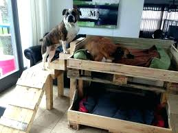 raised wooden dog bed outdoor pallet diy wood