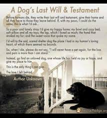 Dog Passing Quotes Delectable Quotes About Death Of A Pet Page 48 PinBestQuotes