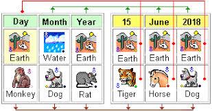 2018 2019 Chinese Horoscope Dog Prediction Master Tsai Dog