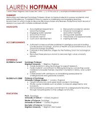 Professor resume example