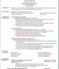 how to write an essay a thesis persuasive essay topics high  how to write a college essay paper the yellow essay sample essay question resume