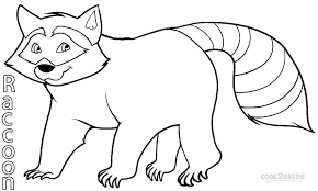 Small Picture Printable Raccoon Coloring Pages For Kids Cool2bKids