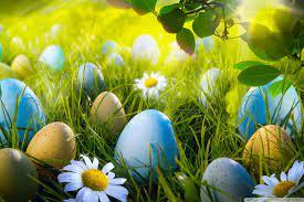 Easter Egg Hunt Ultra HD Desktop ...