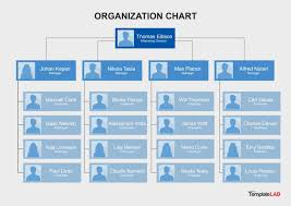 004 Microsoft Organisational Chart Template Organization