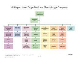 Human Resource Organizational Structure Chart Human Resource Management Gerry Dessler Chapter 1