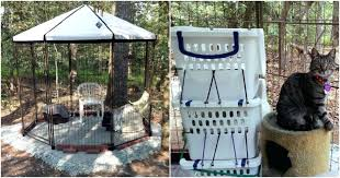 advantek pet stuff take a gander at play area for her cats she connected three pet