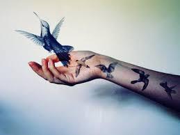 Ptáci Na Rukou Tetování A Jejich Význam