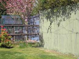 Painted Fences a bit of colour in the garden the land rover owners wife 3743 by xevi.us