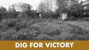 The Wartime Kitchen And Garden Seans Wartime Kitchen Garden 3 First Day Of Weeding Youtube