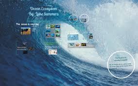 Ocean Ecosystem by Deborah Summers