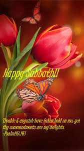 82289216 Pin By Ginger Blossom On Sabbath Blessings Happy Sabbath