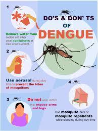thai health warns about the sp of dengue fever over rainy  dengue fever12