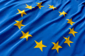 Image result for EURO FLAG