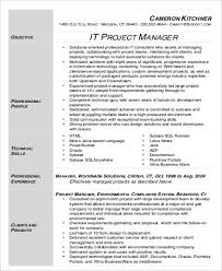 Project Manager Resume Sample Elegant 9 Sample It Project Manager