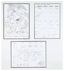 Owl Pellet Bone Chart Owl Pellet Chart Set Teaching Supplies Biology Classroom