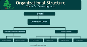 Umbrella Organization Chart Organizational Structure Youth Go Green