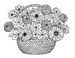 Flower Coloring Pages For Adults Free Printable Page Big Natural