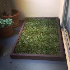 patio dog potty fake grass artificial diy
