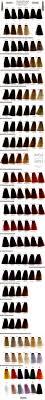 Color Design Hair Colour Chart Color Design Hair Color Swatch Book