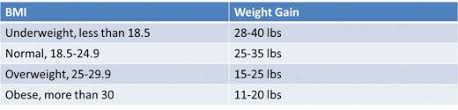Pregnancy Weight Gain Chart Overweight How Much Weight Should I Gain During Pregnancy Wehavekids
