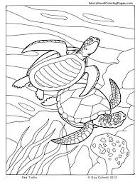 yeezy coloring book 372 best coloring book fish sea life se images on of yeezy coloring