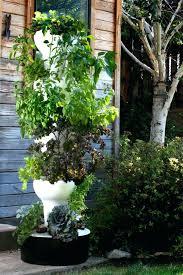 hydroponics garden hydroponic tower diy grove ca