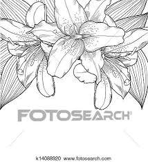 美しい 白黒 背景 で ユリ Hand Drawn クリップアート切り張りイラスト絵画集