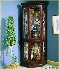 Curio Cabinet Lights Corner Curio Cabinet With Light Soul Speak Designs