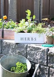 elegant garden treasures planter garden garden treasures resin planter