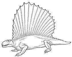 Disegni Per Bambini Dinosauro Dimetrodonte Da Colorare Disegni Da