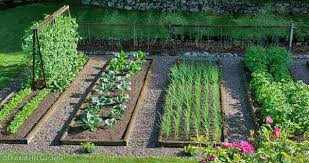 Small Picture Backyard Vegetable Garden Design Small Vegetable Garden Design