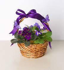violetsanderflies gift basket purple spring toledo ohio