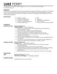 Business Analyst Resume Summary Examples Charming Sample Business Analyst Resumes Entry Level Ideas Entry 91