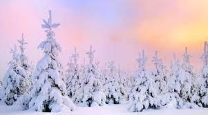 Winter Snow Desktop Wallpaper ...