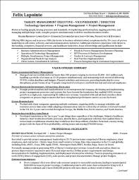 Program Manager Resume page 1