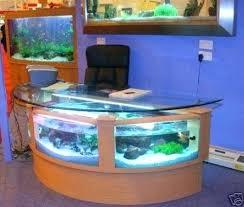 office fish tank my next office p gal half circle shape desk aquarium fish  ready with . office fish tank ...