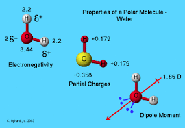 Geometry Of Molecules Chemistry Libretexts