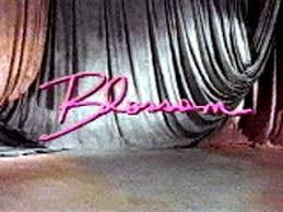 Blossom (TV series) - Wikipedia