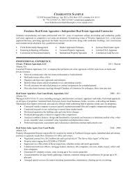Traditional Resume Template Interesting Traditional Resume Template