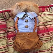 Cool <b>Dog Clothes</b> Bow Dog Jumpsuit Romper <b>Spring</b> Pet Coat ...