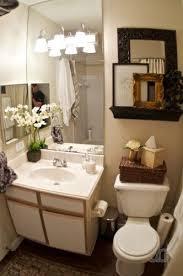 apartment bathroom decor. Bathroom: Luxurious Best 25 Apartment Bathroom Decorating Ideas On Pinterest From Decor