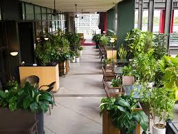 modern office plants. Business Office Plants Modern E