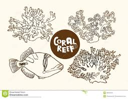 coral reef fish drawing. Delighful Fish Coral Reef Fish And Corals Vector Contour Drawing Throughout Reef Fish Drawing R