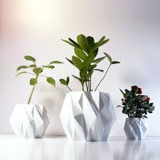 office pot plants. Excellent Modern Pot Plants Fascinating Ideas On Beautiful Flower Latest Images Of In Pots Office Style I