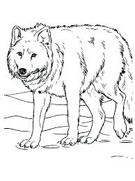 Wolf Printable Coloring Pages Running Downcom