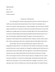 bureaucracy essay chyna sherrell soc  4 pages bureaucracy essay