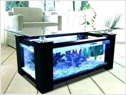 office fish tanks. Office Fish Tanks Aquarium S Best For A
