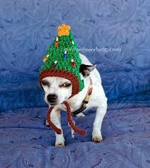 Crochet Dog Hat Pattern Amazing Crochet Dog Hat Pattern Ideas Best Collection Video Tutorial