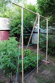 Rope Trellis Designs Diy Garden Trellis Tutorial Crafty Sauce